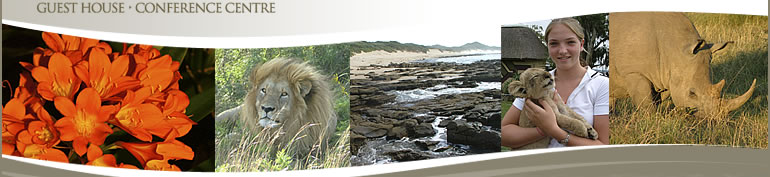 travel south africa, wild coast, east london, eastern cape, accommodation east london, guest houses east london